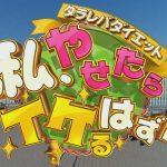 watashi-yasetara-ikeruhadu_thum